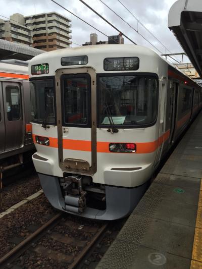 【乗り鉄】JR東海「乗り鉄☆たびきっぷ」で乗りつぶしの旅