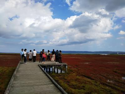 2018.9.15~19 一足早い北海道の紅葉巡り5日間 真っ赤なサンゴ草と鮭の遡上