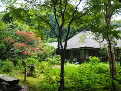 浄智寺 鎌倉五山のひとつ。境内裏の庭園の美しさ! 鎌倉三十三観音霊場巡り。なんとこちらにも葵の御紋が!!