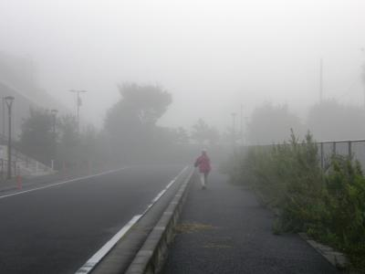 今朝の早朝ウォーキングは霧の中、幻想的な景色を見ながら歩きました
