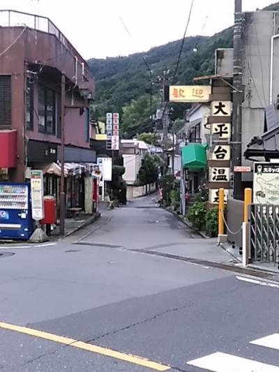 レンタカーで回る、初めての伊豆箱根、ちょっと江の島(2日目宿編)