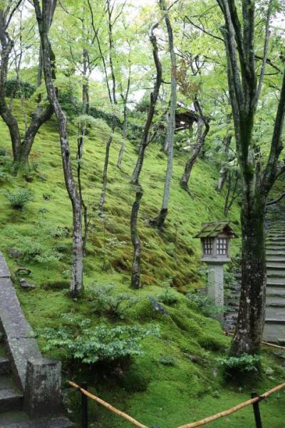 嵐山を日帰り散策