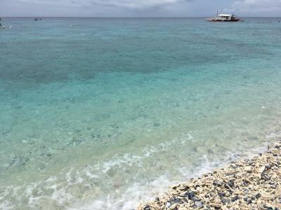 セブ島:オスロブまで行ってジンベエザメを見れなかった旅