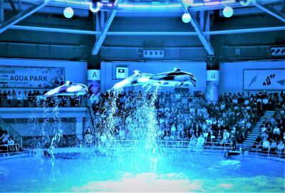 東京☆雨の日散歩~♪サンシャイン60展望台「スカイサーカス」& マクセル「アクアパーク品川」イルカのジャンプがすごいっ~☆