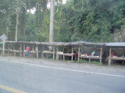 チェンライからファーン(チェンマイ)はミニバスで