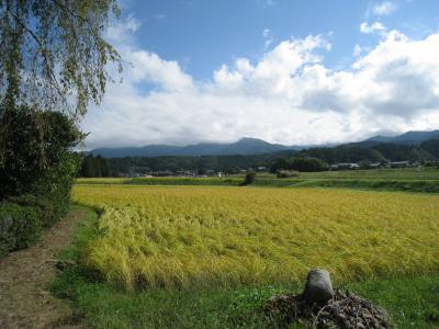 さわやかな秋晴れの日~農村景観日本一「いわむら」を歩く~