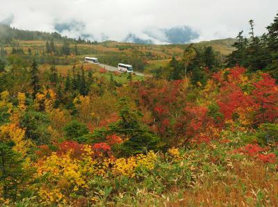 絶景の立山を満喫する山旅3泊4日 その1彩り鮮やかな紅葉のアルペンルート編