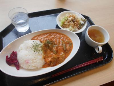 ニッポンの中の外国めぐり1807  「JICA地球ひろばで、ギニア料理&シリア料理」  ~市ヶ谷・東京~