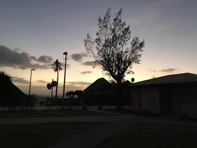 涼しくなった沖縄へ