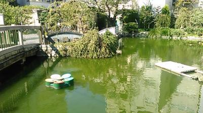 大阪天満宮。星合池から境内摂社を巡る。