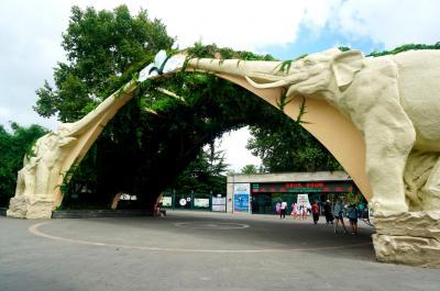 上海で3泊4日ひとり旅・3日め前編=上海動物園を歩き回りカフェで財布を落とす=