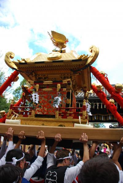 ひとりお祭り部 御香宮神幸祭と平等院ライトアップ