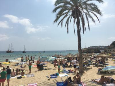 マヨルカ島とバネッサウィリアムスとセレブリティークルーズ最終日バルセロナへ!