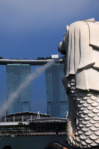 絶景を求めて南アフリカ・サファリの旅その01~乗継のシンガポール