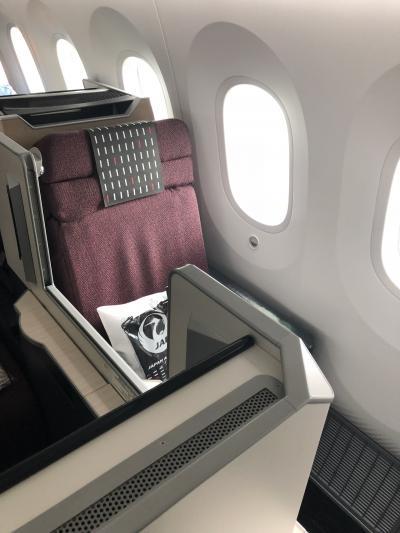 特典JALビジネスバンコク経由タイスマイル航空で行くルアンパバーン201810
