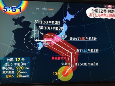451-夫の還暦記念は4度目のWDW⑩…まさか!最後の最後のハプニング、台風で帰れな~い!