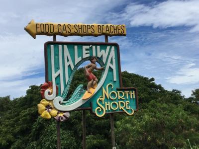 2018年のハワイ旅②〜ノースショアを貸切チャーターツアーで〜
