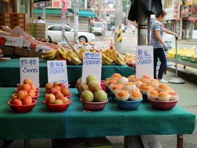韓国 坡州
