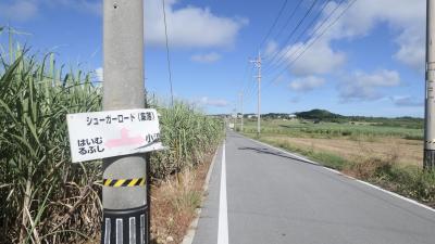 沖縄の旅(小浜島・竹富島)2日目前半 小浜島編