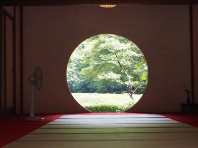 名月院 紫陽花の季節に「悟りの窓」を撮影出来なかったので再度挑戦!してみました。ところが・・・(・。・;