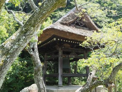 東慶寺 真夏の暑さに 花の寺と言われる境内へ。鎌倉三十三観音霊場