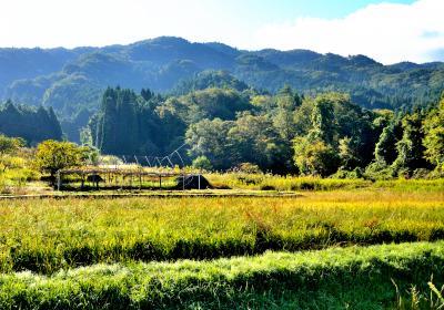 曽良山(712m)愛知・岐阜県境、歴史を感じる山歩き