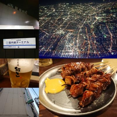 ANA・JALマイル修行?東京経由で北海道(東京編)