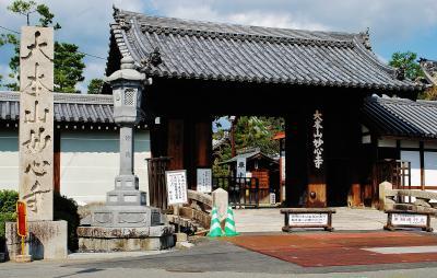 京都の本山参り (大本山妙心寺と東寺を巡る)