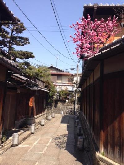 随求堂ご開帳と美味い物と骨董の日帰り京都旅