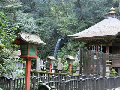 高尾山ハイキング:六号路(びわ滝コース)、一号路(表参道コース)