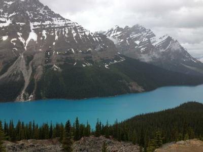 2013年 カナダの旅②