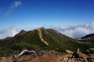 石、岩の連続だった天狗岳(八ヶ岳)登山