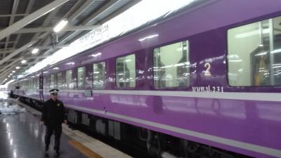 2018 14th Overseas Trip(1)ドンムアン駅にJR寝台車がやってきた 乗り継ぎバンコクの1日