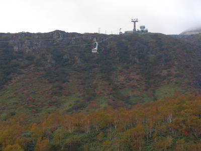 紅葉が綺麗に色づく那須高原に行って来ました!!(^0^)