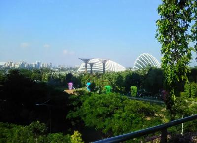 シンガポール、こんな国だったんだ