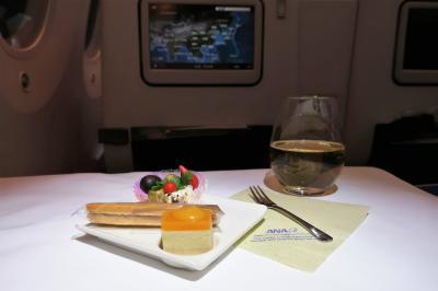 【2018海外】3連休でタージマハルへ行ってみた。#01 ~搭乗記 行きはANAで帰りはJALで (ANA編)~