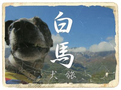 犬旅 ~白馬~