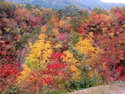 2017年10月 錦秋の東北 4日目 鳴子峡の紅葉とこけしの店