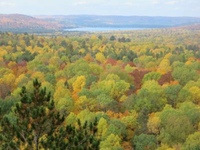 アルゴンキン州立公園へ、ミニハイキングをして紅葉を楽しみました。