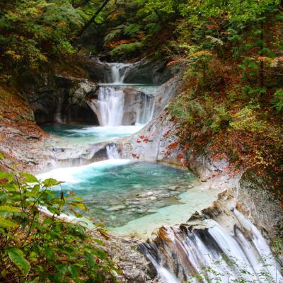 ブララブコー 「秋を探しに西沢渓谷 沢歩き ♪」