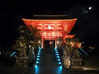 京都お寺めぐり/清水寺の夜間特別拝観へ