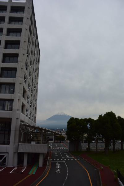 雪が積もった富士山を見ながら散歩して来ました 2018.10.15