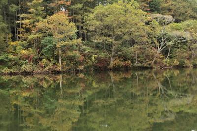 雲海が見える宿に泊まる♪ トレッキング三昧の紅葉旅 希望湖を目指して♪