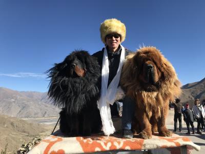 天空の旅チベット!