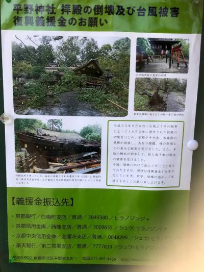 dmnkより4トラベルさんに提案!京都復興・再生の力にならないでしょうか。