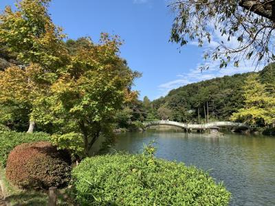 町田ダリア園と薬師池公園