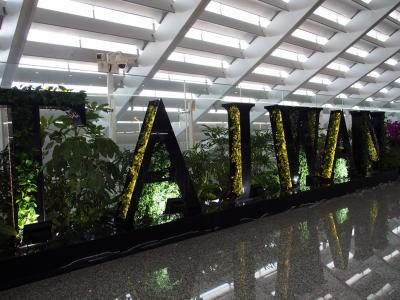 ゆるく楽しむ、ふらっと台北2泊3日の旅【初日編:バニラエアで出発&日本人に大人気のホテル、サンワンレジデンス台北に宿泊&緑がいっぱいのオシャレエリア・富錦街へ】
