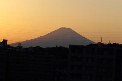 裏山から見る夕方の富士山