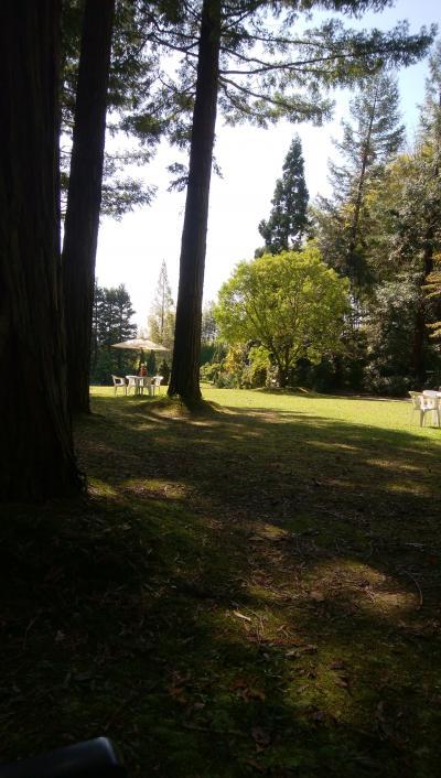 レッドヒルヒーサーの森散策。