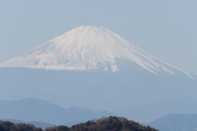 瑞泉寺裏山から見る富士山